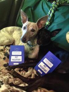 Puppy Passports